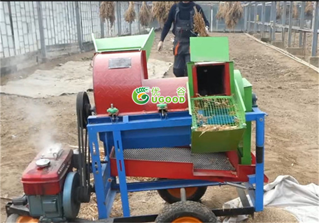 Chia Thresher Chia Seeds Threshing and Cleaning Machine