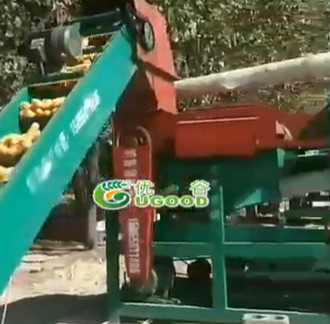 Large Maize Threshing Line UGTL-1 Installed in Heilongjiang