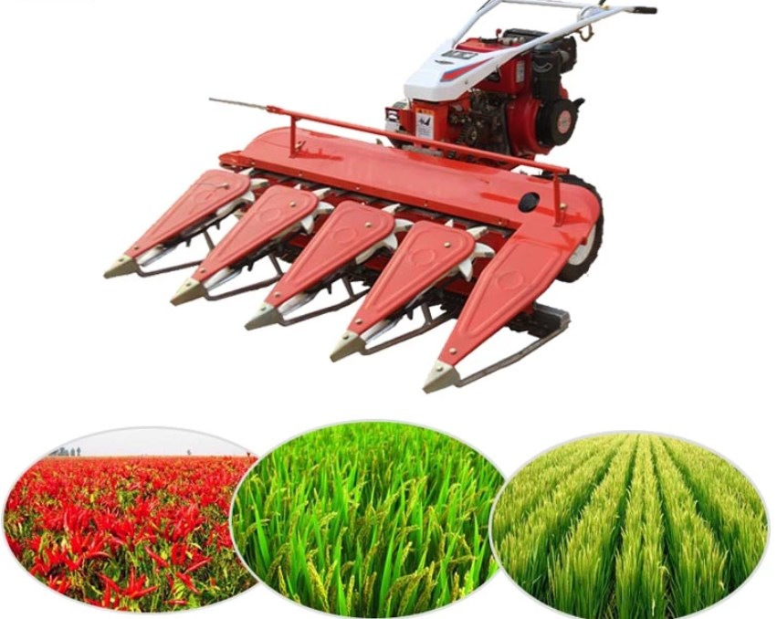 Wheat Paddy Harvester Small Harvester with Japan Brand Gasoline